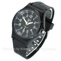 Кварцевые наручные часы Q&Q CWC563